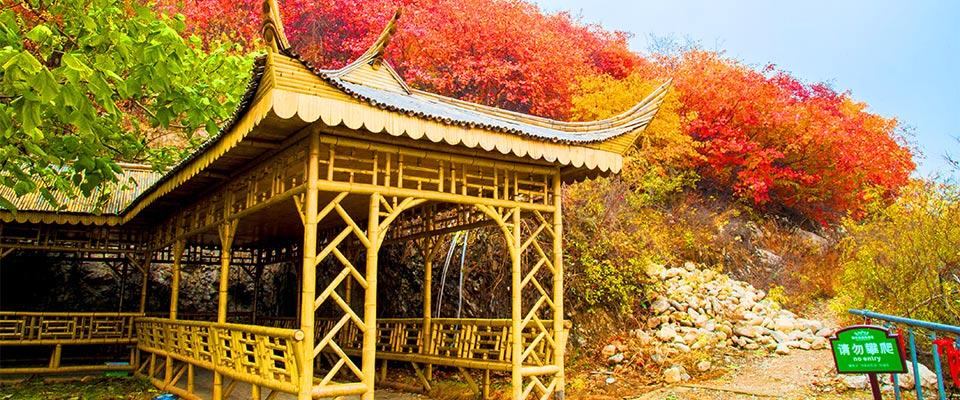 天津| 天津 蓟州溶洞景区,奇观绚丽多姿